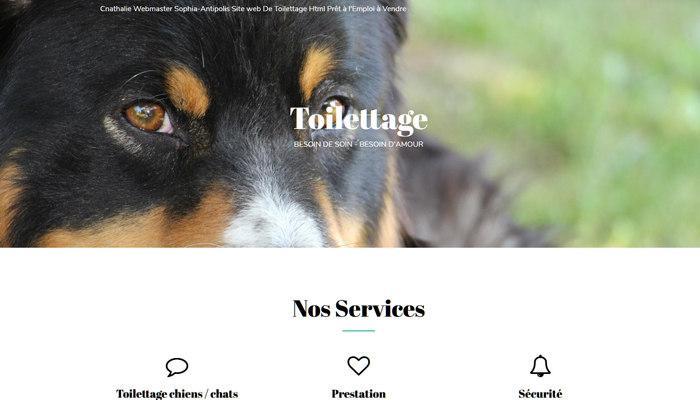 Site Internet Prêt à l'Emploi De Toilettage à Vendre
